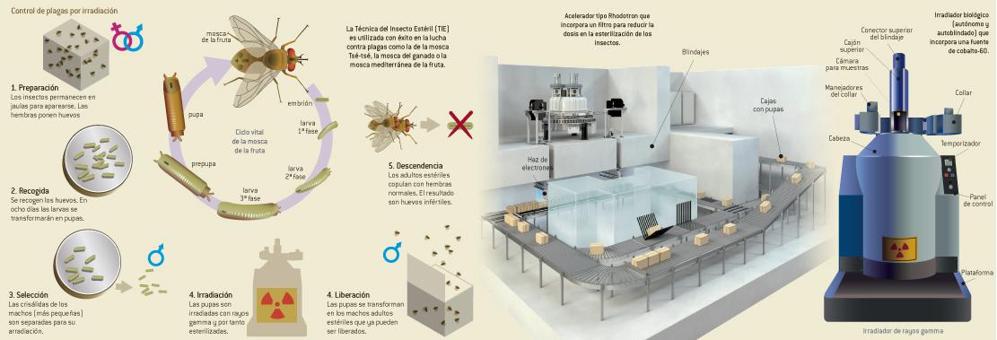 Control de plagas mediante radiación